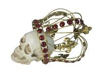 Cranio che indossa corona dorata Fotografia Stock Libera da Diritti