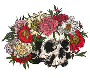 Cranio che indossa una corona delle peonie Fotografie Stock Libere da Diritti
