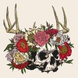 Cranio che indossa una corona delle peonie con i corni Immagini Stock Libere da Diritti