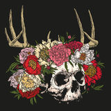 Cranio che indossa una corona delle peonie con i corni Immagini Stock