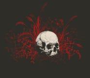 Cranio circondato da un campo di erba Fotografia Stock