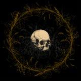 Cranio circondato da una corona sul campo di erba Immagine Stock Libera da Diritti