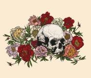 Cranio circondato dalle peonie Fotografia Stock Libera da Diritti