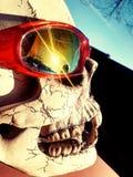 Cranio con gli occhiali da sole Immagini Stock