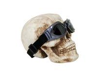 Cranio con gli occhiali di protezione Fotografia Stock