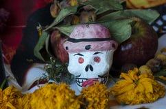 Cranio con i fiori Immagini Stock