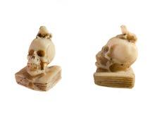 Cranio con una rana Fotografia Stock Libera da Diritti