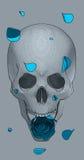 Cranio con una rosa blu Immagine Stock