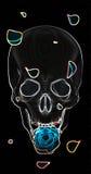 Cranio con una rosa blu su un fondo nero Immagine Stock