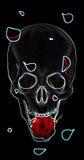 Cranio con una rosa rossa su un fondo nero Immagini Stock