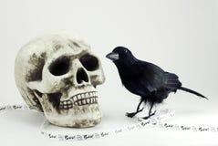 Cranio, corvo, bandiera di Halloween Fotografie Stock
