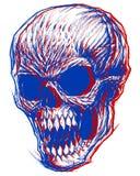 Cranio 3d Immagini Stock Libere da Diritti