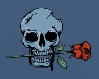 Cranio d'annata e rose Fotografia Stock