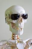 Cranio degli occhiali da sole Immagine Stock