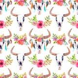 Cranio del toro dell'acquerello con i fiori e le piume Immagini Stock