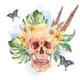 Cranio dell'acquerello, foglie tropicali, fiori, farfalle ed abilità illustrazione di stock