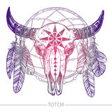 Cranio della Buffalo con le piume e Dreamcatcher Fotografia Stock