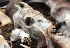Cranio della capra alla fiera degli artigiani Immagine Stock