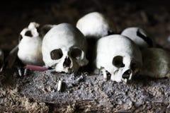 Cranio della gente di Kete Kesu Fotografia Stock Libera da Diritti