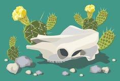 Cranio della mucca con il cactus di fioritura 1 illustrazione vettoriale