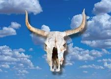 Cranio della mucca nei cieli Immagine Stock
