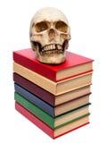 Cranio della persona e del libro Fotografie Stock