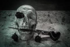 Cranio di amore di natura morta fotografia stock