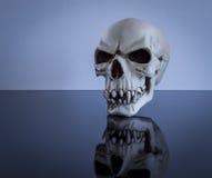 Cranio di galleggiamento Fotografia Stock