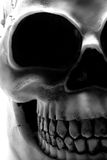 Cranio di Halloween Fotografie Stock