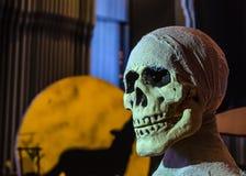 Cranio di Halloween Fotografie Stock Libere da Diritti