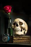 Cranio di natura morta Immagini Stock Libere da Diritti