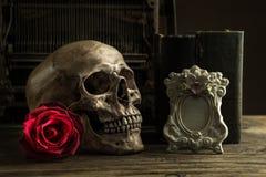 Cranio di natura morta Fotografie Stock