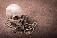 Cranio di natura morta con jewellry Immagini Stock