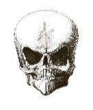 Cranio di semitono Elemento di disegno Invito, partito Mosaico, perforazione, lerciume Fotografia Stock