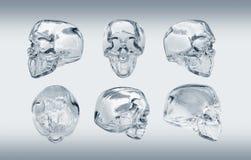 Cranio di vetro Immagini Stock