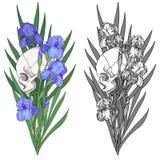 Cranio e fiori Fotografia Stock Libera da Diritti