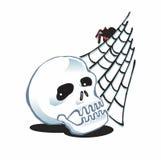 Cranio e ragno Immagini Stock