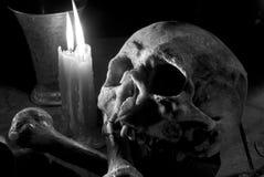 Cranio ed ossa Fotografia Stock