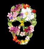 Cranio floreale con i fiori d'annata Acquerello Halloween fotografie stock libere da diritti