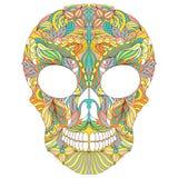 Cranio floreale su fondo bianco Fotografia Stock