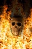 Cranio, fondo di Halloween Fotografie Stock
