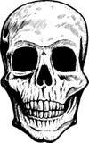 Cranio fronte illustrazione di stock