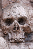 Cranio guasto Fotografia Stock Libera da Diritti