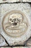 Cranio intagliato Fotografie Stock