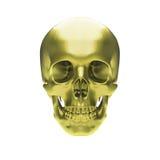Cranio metallico dell'oro Fotografia Stock