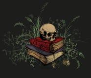 Cranio nei libri occulti, circondati da un'erba Immagini Stock