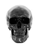 Cranio nero Fotografia Stock Libera da Diritti
