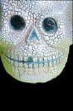 Cranio sul nero fotografie stock