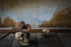 Cranio sulla tavola Fotografie Stock Libere da Diritti