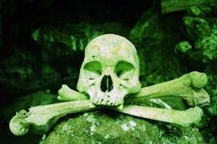 Cranio tossico immagini stock
